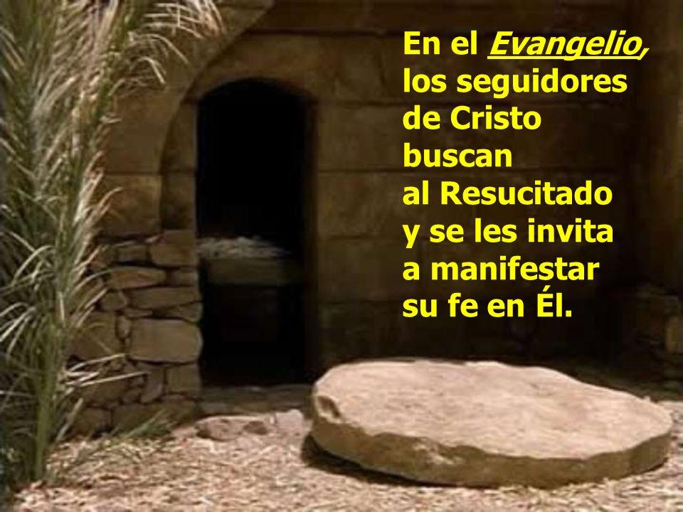 En el Evangelio, los seguidores de Cristo buscan al Resucitado
