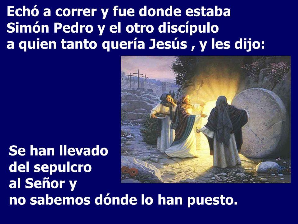Echó a correr y fue donde estaba Simón Pedro y el otro discípulo a quien tanto quería Jesús , y les dijo: