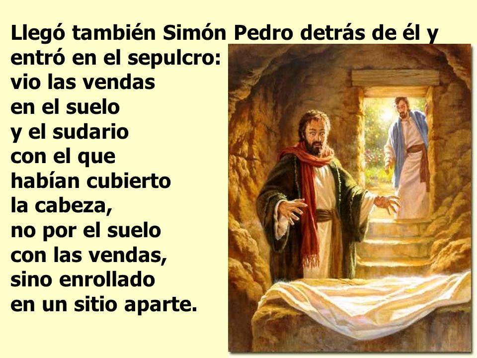 Llegó también Simón Pedro detrás de él y entró en el sepulcro: