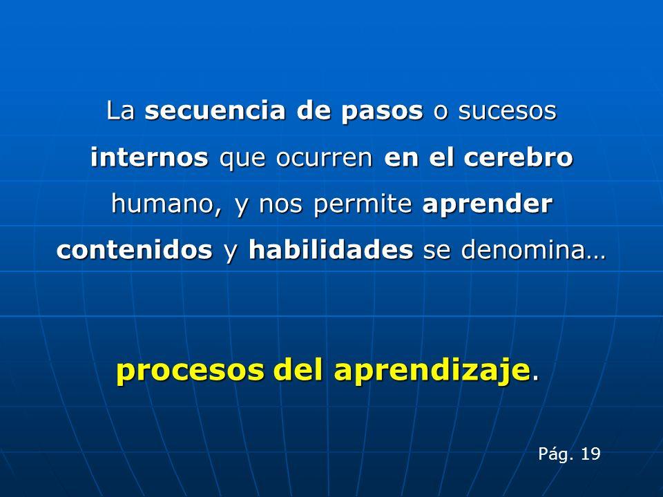 procesos del aprendizaje.
