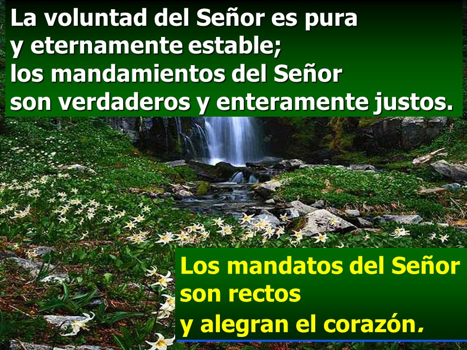 La voluntad del Señor es pura y eternamente estable; los mandamientos del Señor son verdaderos y enteramente justos.