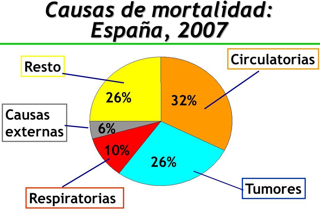 Causas de mortalidad: España, 2007