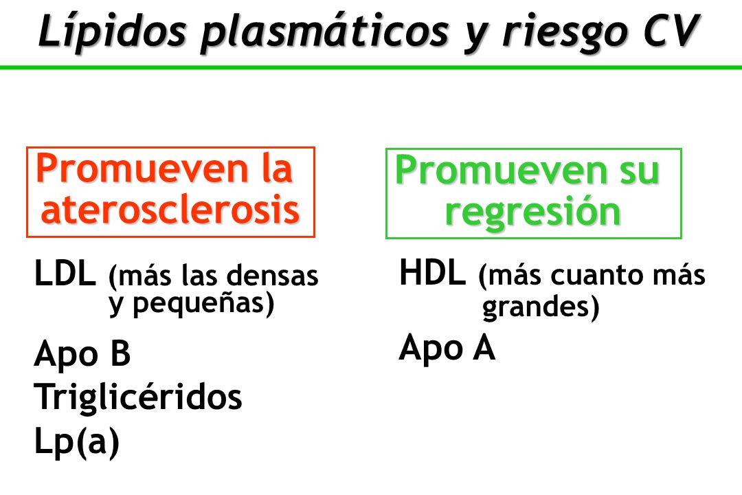 Lípidos plasmáticos y riesgo CV