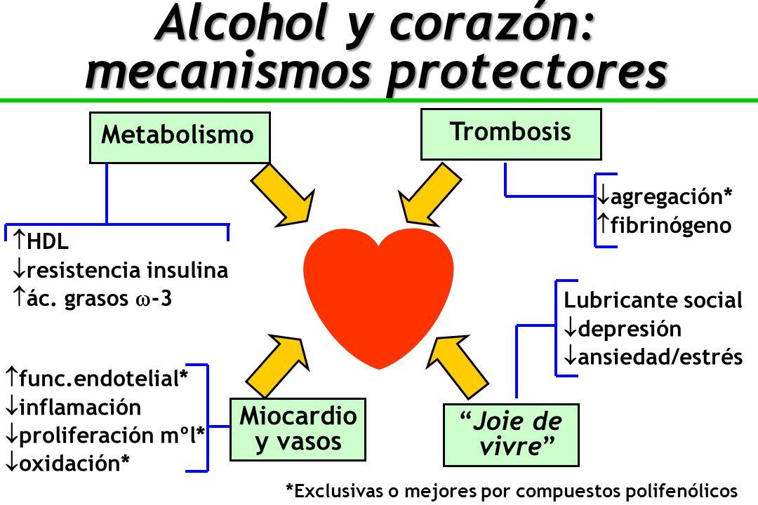 Alcohol y corazón: mecanismos protectores