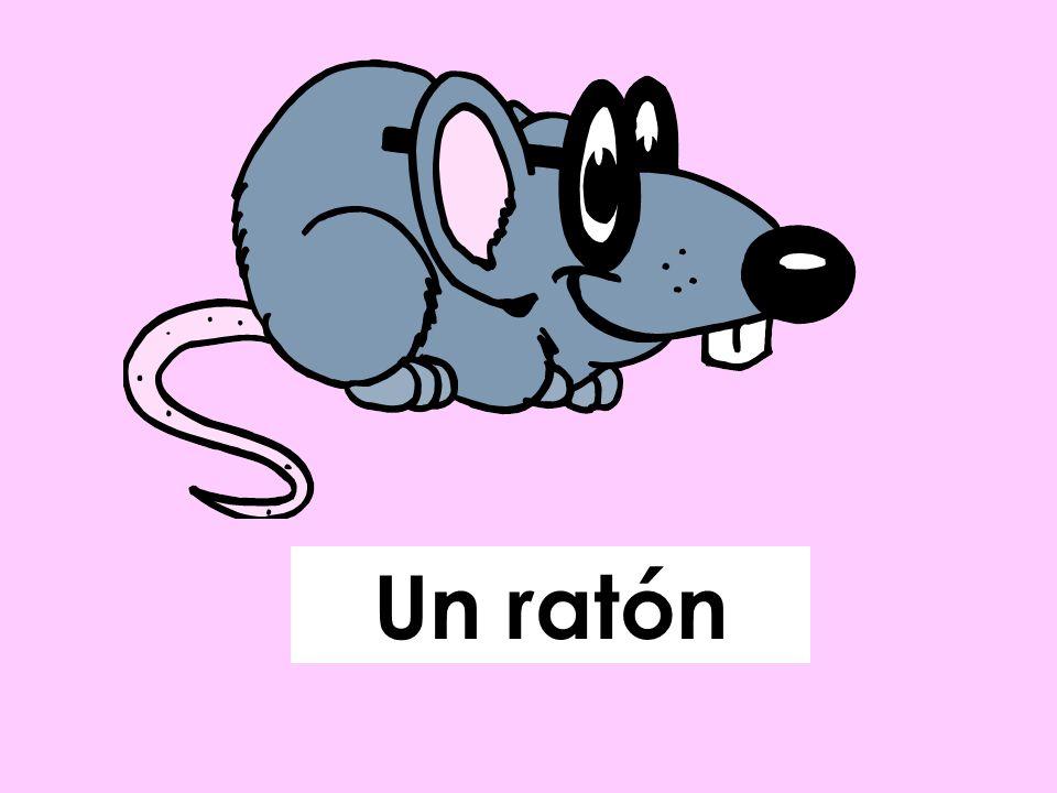 Un ratón