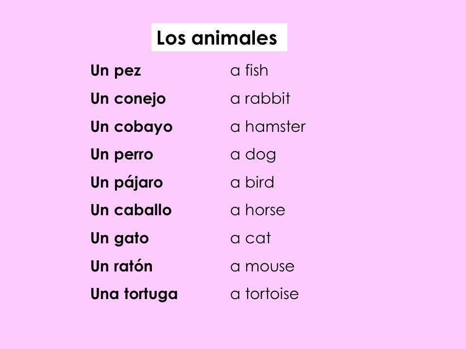 Los animales Un pez a fish Un conejo a rabbit Un cobayo a hamster