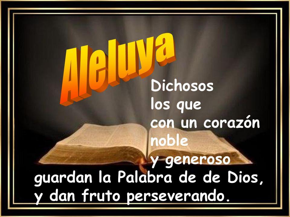 Aleluya Dichosos los que con un corazón noble y generoso guardan la Palabra de de Dios, y dan fruto perseverando.
