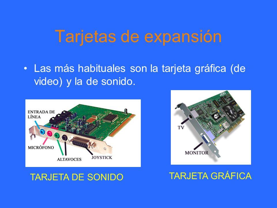 Tarjetas de expansión Las más habituales son la tarjeta gráfica (de video) y la de sonido. TARJETA DE SONIDO.