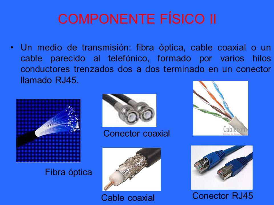COMPONENTE FÍSICO II