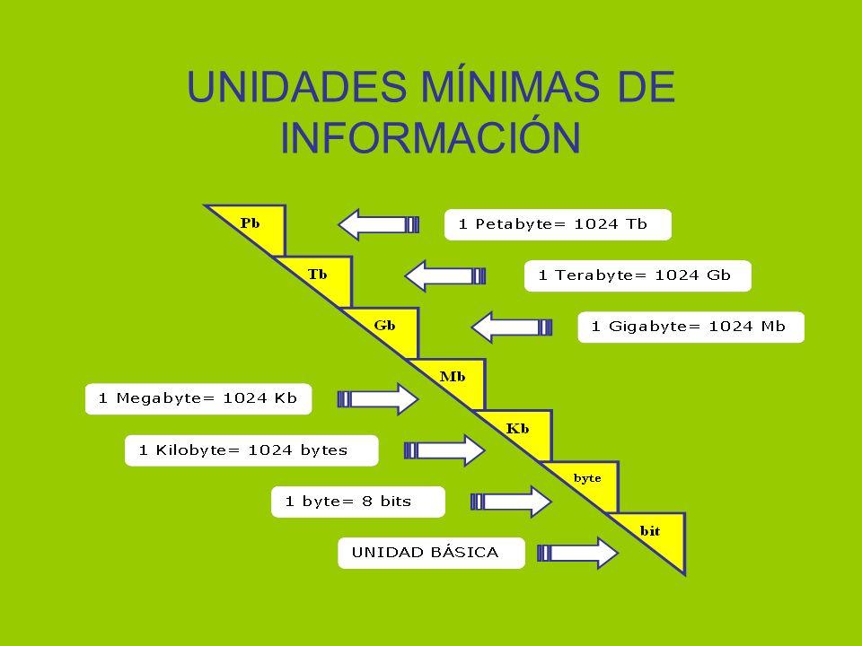 UNIDADES MÍNIMAS DE INFORMACIÓN