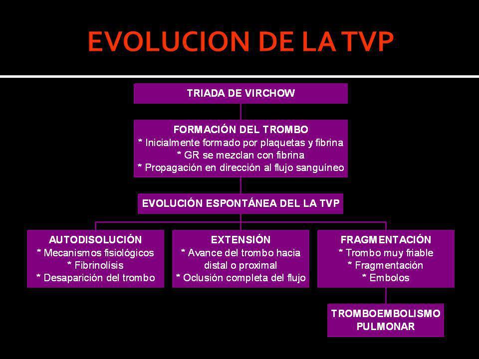 EVOLUCION DE LA TVP
