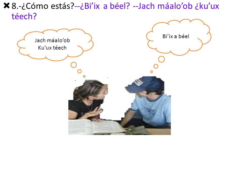 8.-¿Cómo estás --¿Bi'ix a béel --Jach máalo'ob ¿ku'ux téech