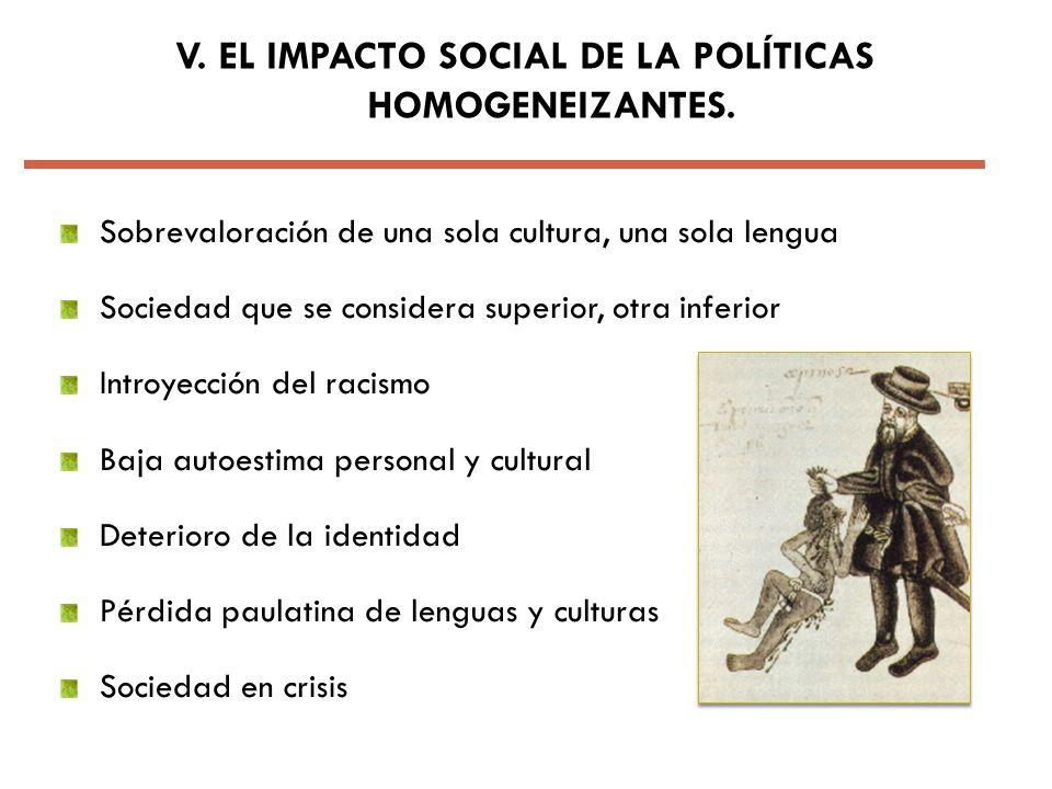 V. EL IMPACTO SOCIAL DE LA POLÍTICAS HOMOGENEIZANTES.