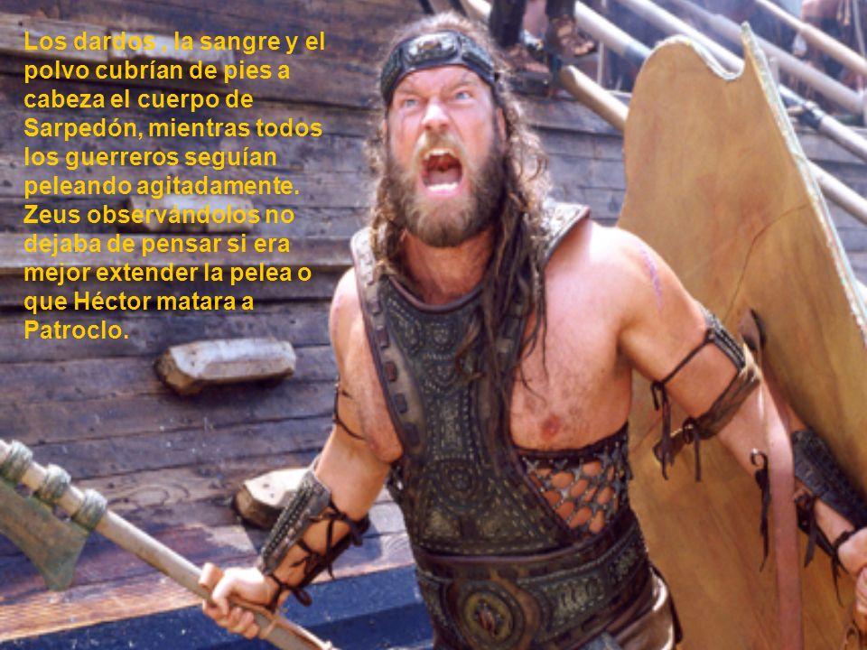 Los dardos , la sangre y el polvo cubrían de pies a cabeza el cuerpo de Sarpedón, mientras todos los guerreros seguían peleando agitadamente.