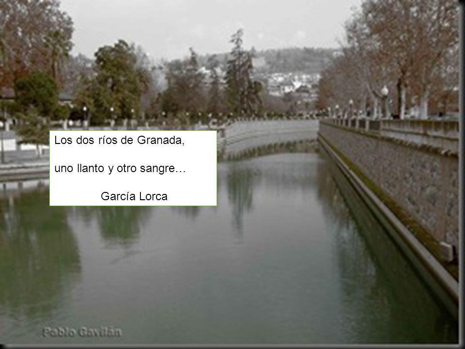 uno llanto y otro sangre… García Lorca