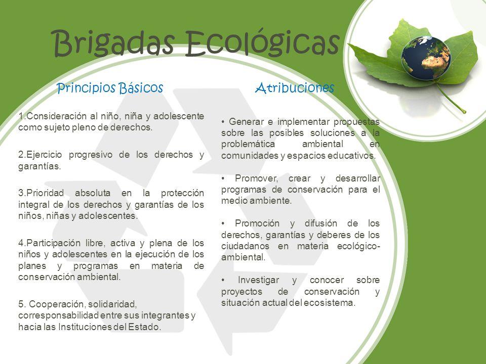 Brigadas Ecológicas Principios Básicos Atribuciones