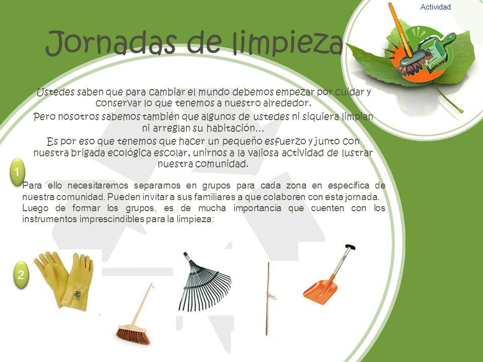 Actividad Jornadas de limpieza.