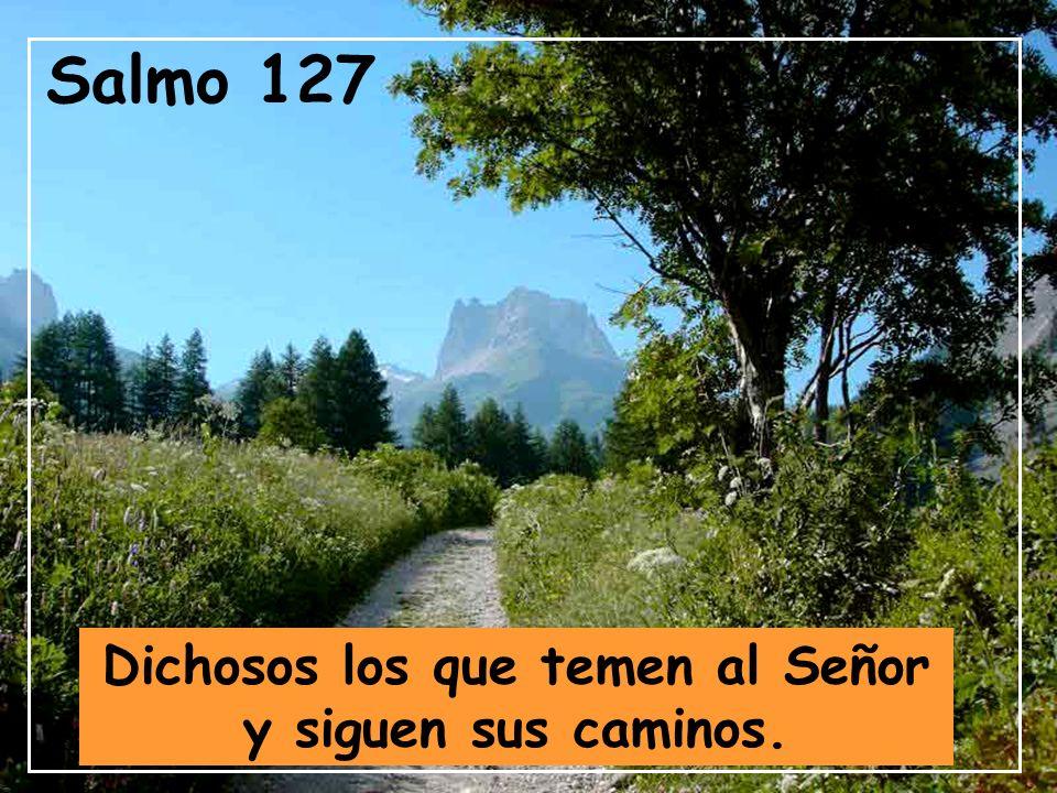 Dichosos los que temen al Señor y siguen sus caminos.