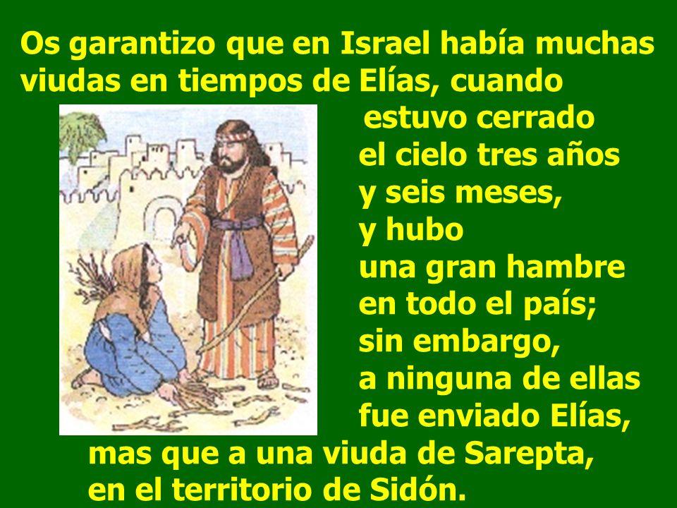 Os garantizo que en Israel había muchas viudas en tiempos de Elías, cuando estuvo cerrado el cielo tres años y seis meses, y hubo una gran hambre en todo el país; sin embargo, a ninguna de ellas fue enviado Elías, mas que a una viuda de Sarepta, en el territorio de Sidón.