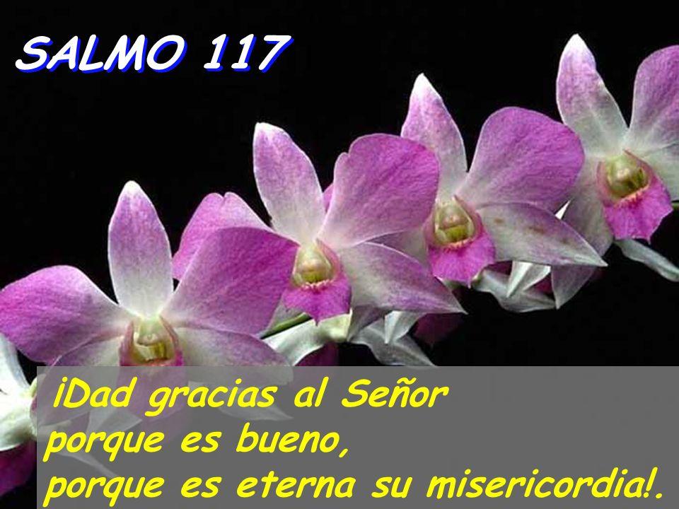SALMO 117 ¡Dad gracias al Señor porque es bueno, porque es eterna su misericordia!.
