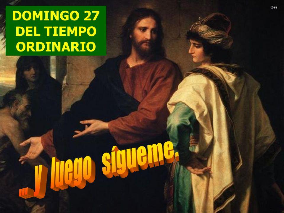 DOMINGO 27 DEL TIEMPO ORDINARIO