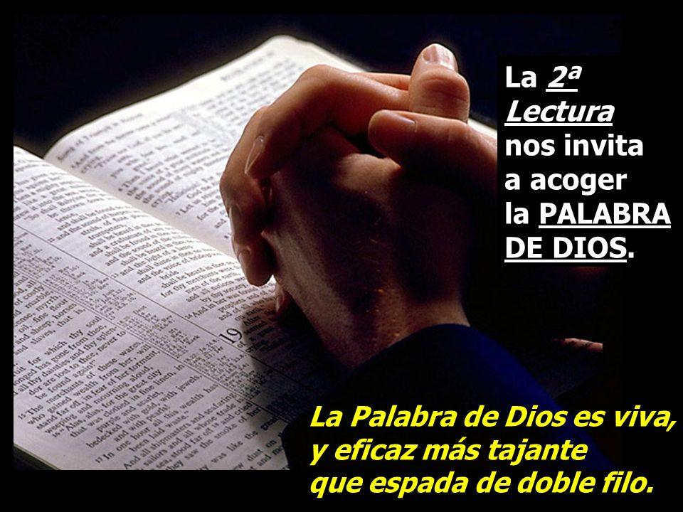 La 2ª Lectura nos invita a acoger la PALABRA DE DIOS.