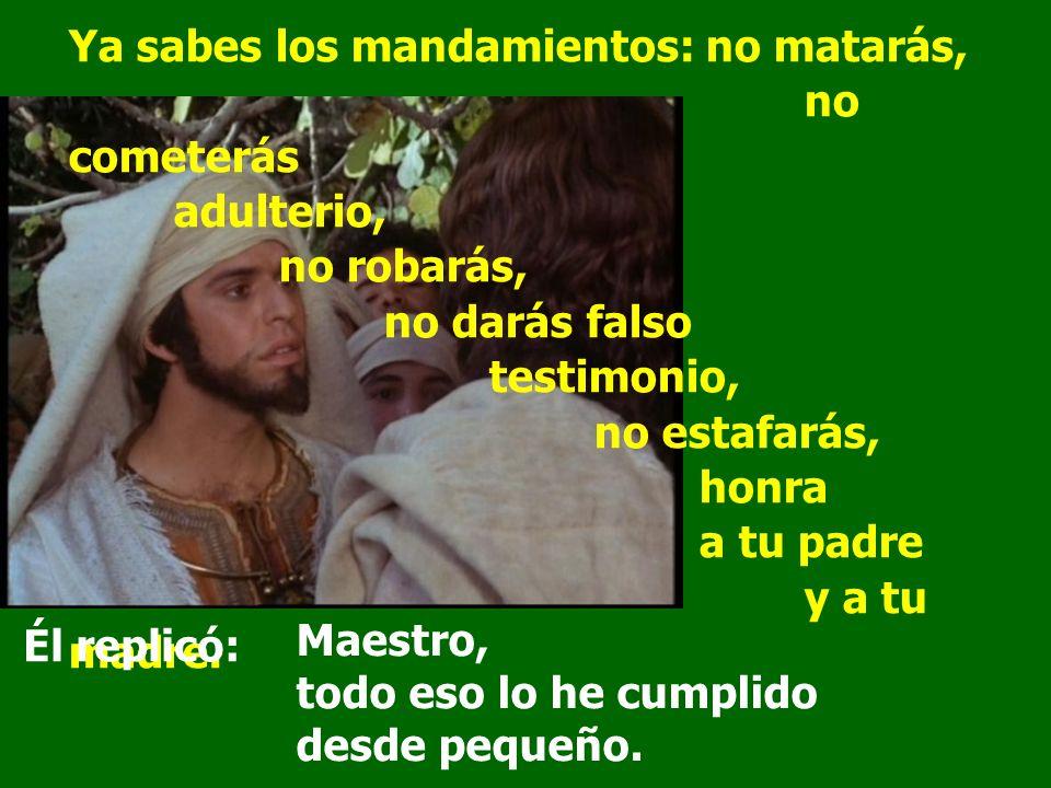 Ya sabes los mandamientos: no matarás,. no cometerás. adulterio,