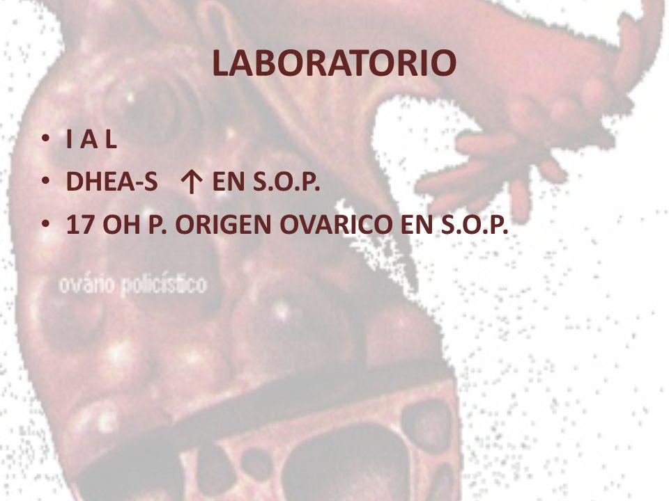 LABORATORIO I A L DHEA-S ↑ EN S.O.P. 17 OH P. ORIGEN OVARICO EN S.O.P.