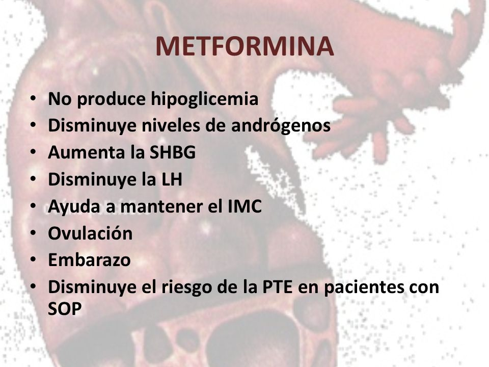 METFORMINA No produce hipoglicemia Disminuye niveles de andrógenos