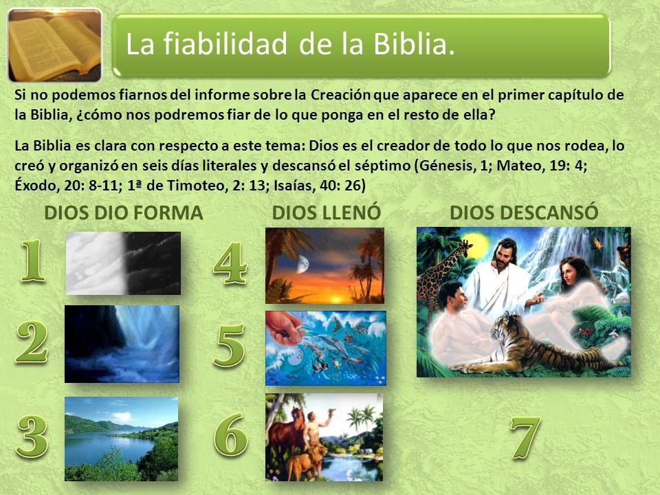 1 4 2 5 3 6 7 La fiabilidad de la Biblia. DIOS DIO FORMA DIOS LLENÓ