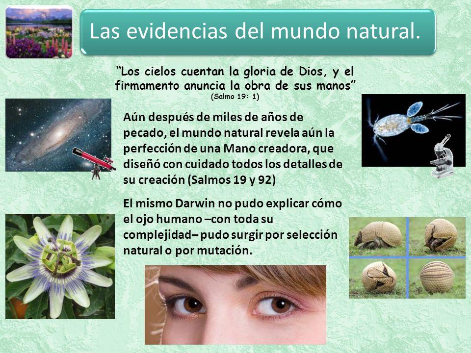 Las evidencias del mundo natural.
