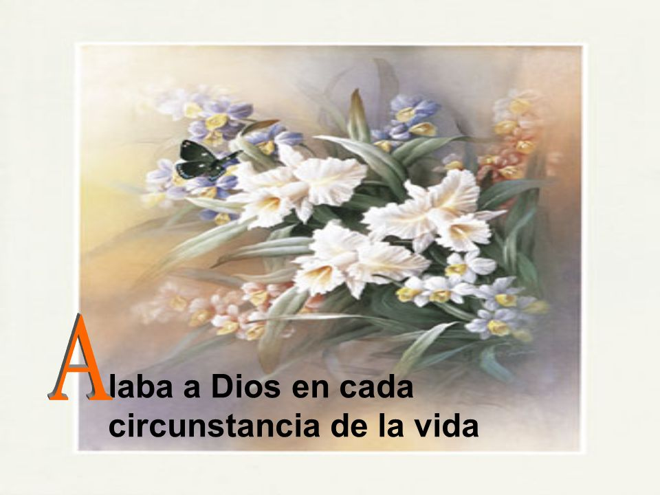 A laba a Dios en cada circunstancia de la vida