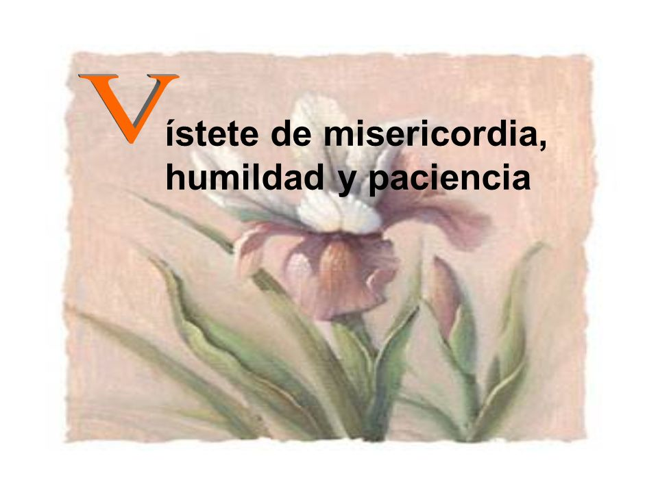 ístete de misericordia, humildad y paciencia