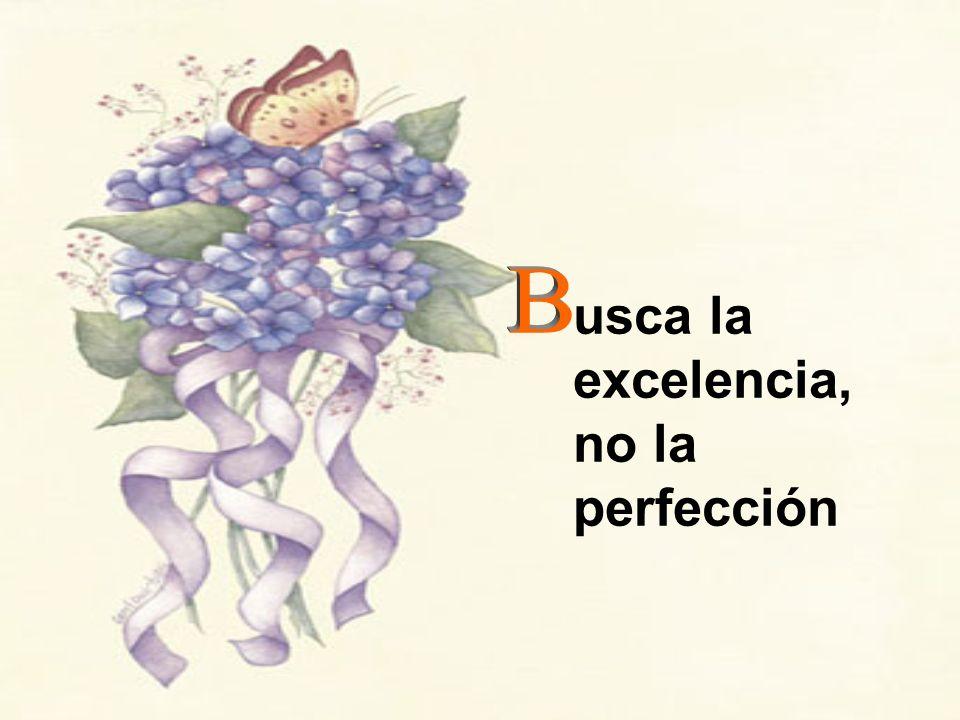 usca la excelencia, no la perfección