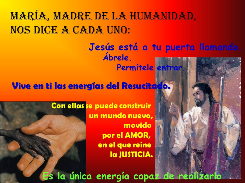 María, madre de la humanidad, nos dice a cada uno:
