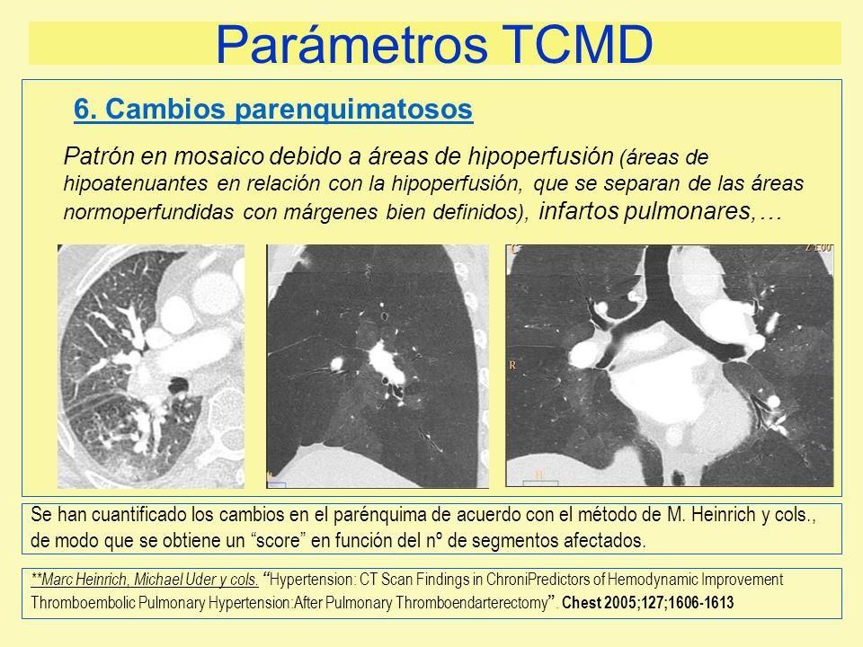 Parámetros TCMD 6. Cambios parenquimatosos