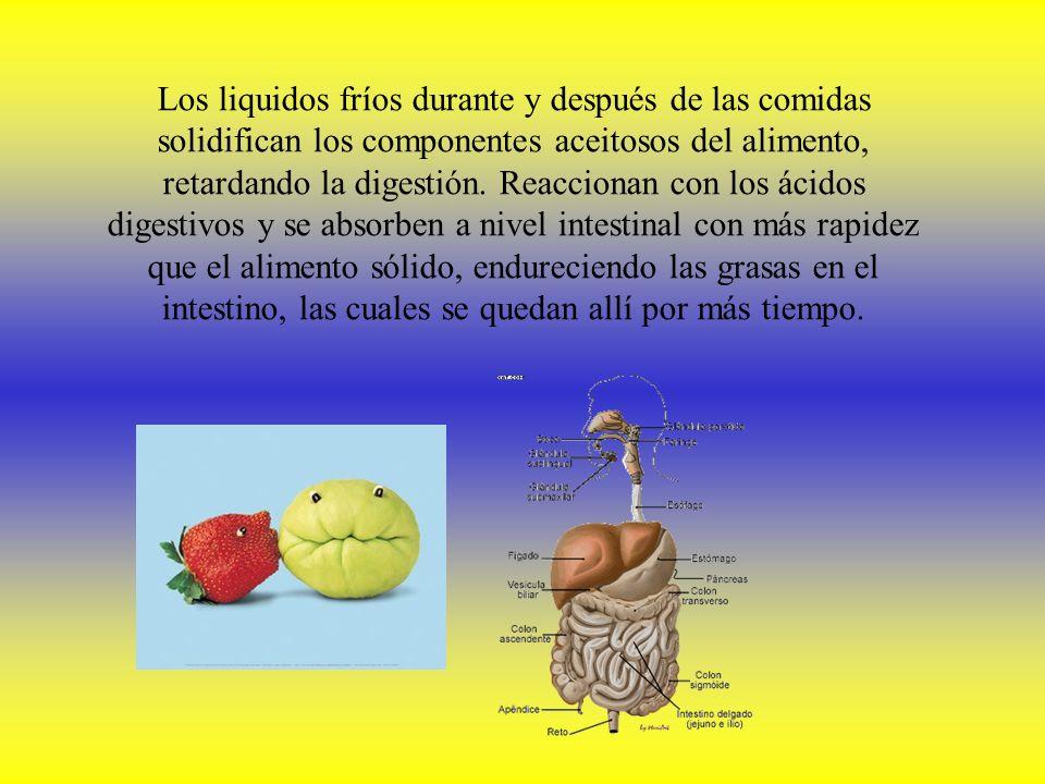 Los liquidos fríos durante y después de las comidas solidifican los componentes aceitosos del alimento, retardando la digestión.
