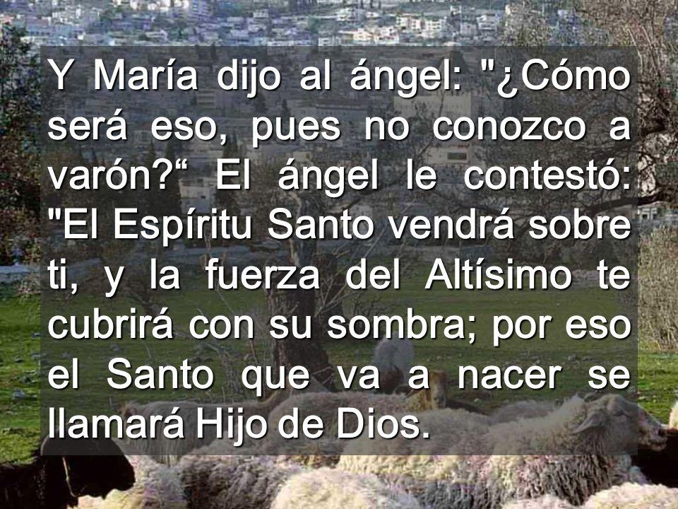 Y María dijo al ángel: ¿Cómo será eso, pues no conozco a varón