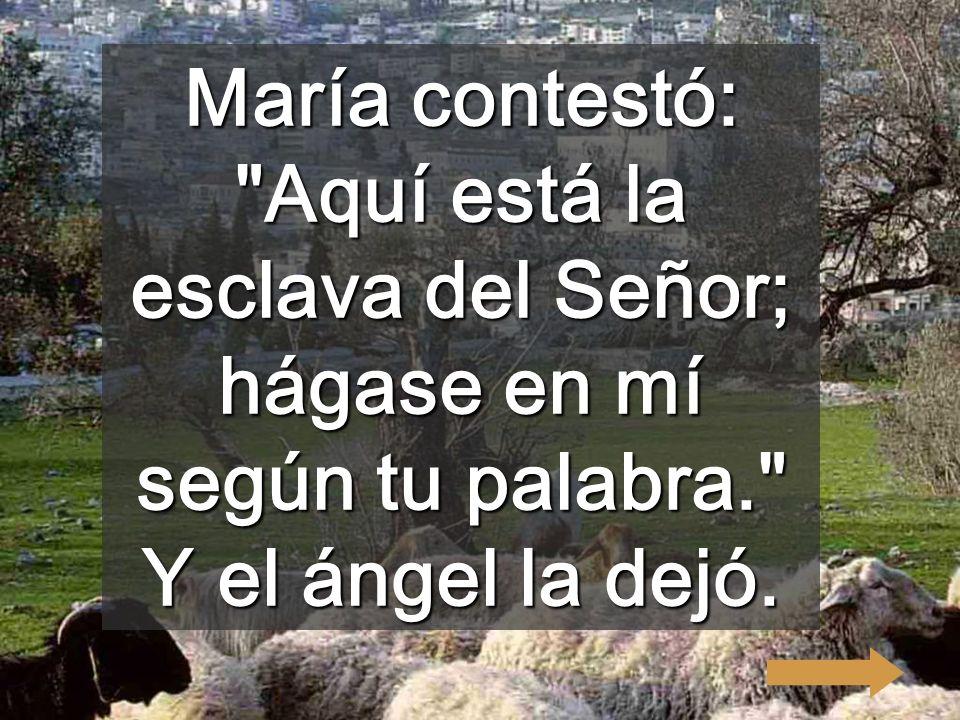María contestó: Aquí está la esclava del Señor; hágase en mí según tu palabra. Y el ángel la dejó.