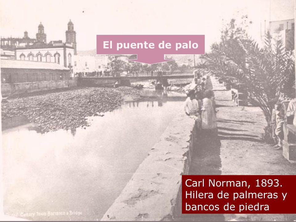 El puente de palo Carl Norman, 1893. Hilera de palmeras y bancos de piedra