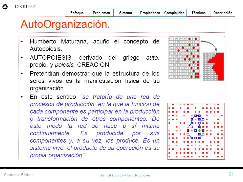 AutoOrganización. Humberto Maturana, acuño el concepto de Autopoiesis.