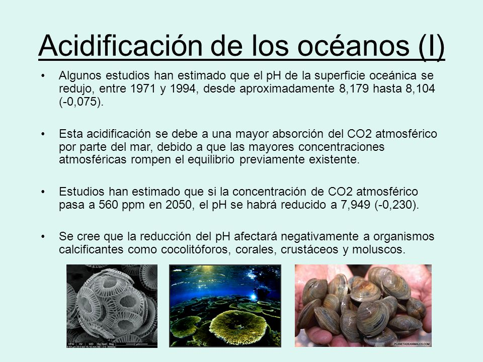 Acidificación de los océanos (I)