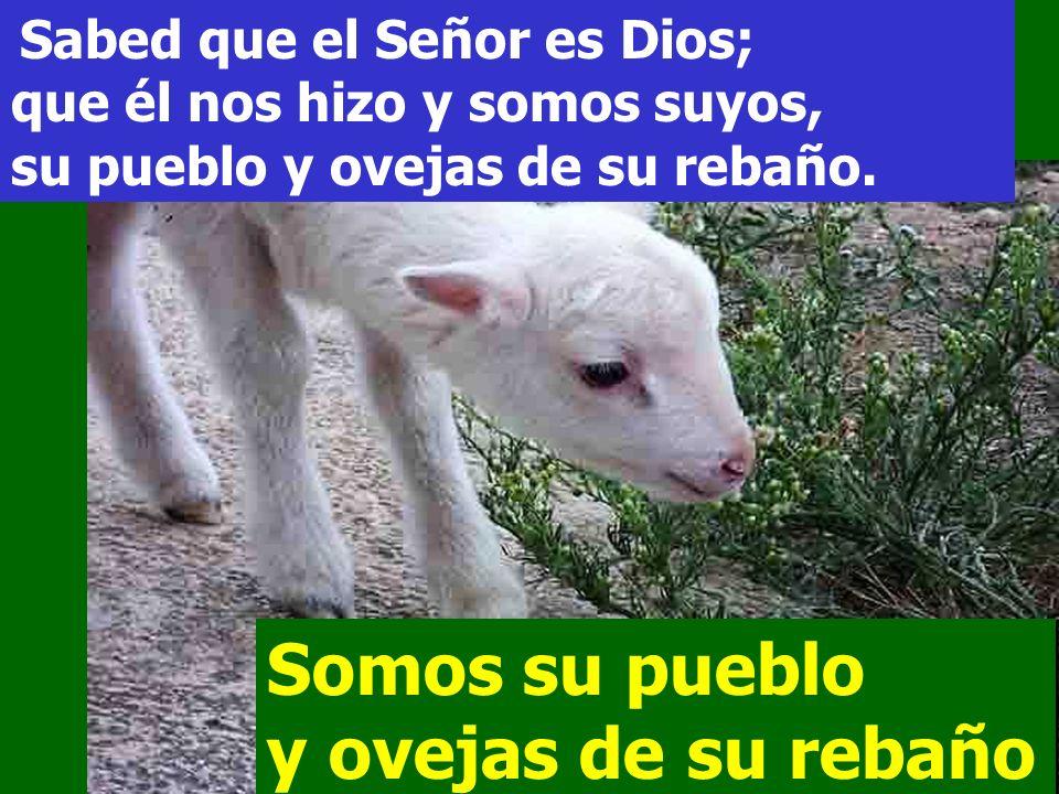 Somos su pueblo y ovejas de su rebaño
