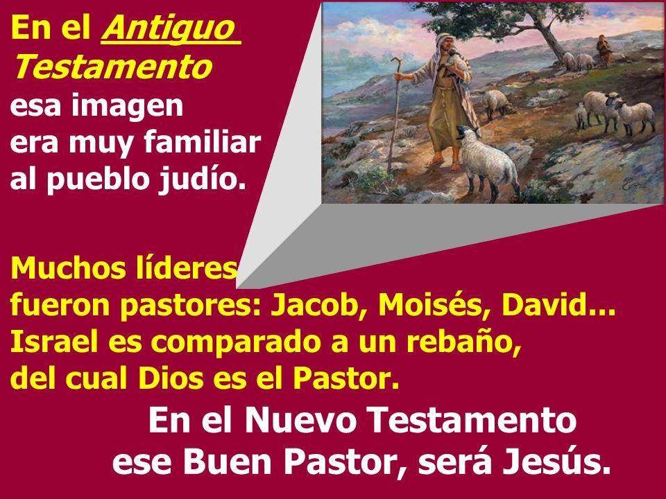 En el Nuevo Testamento ese Buen Pastor, será Jesús.