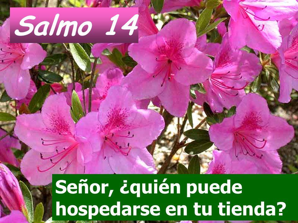 Salmo 14 Señor, ¿quién puede hospedarse en tu tienda