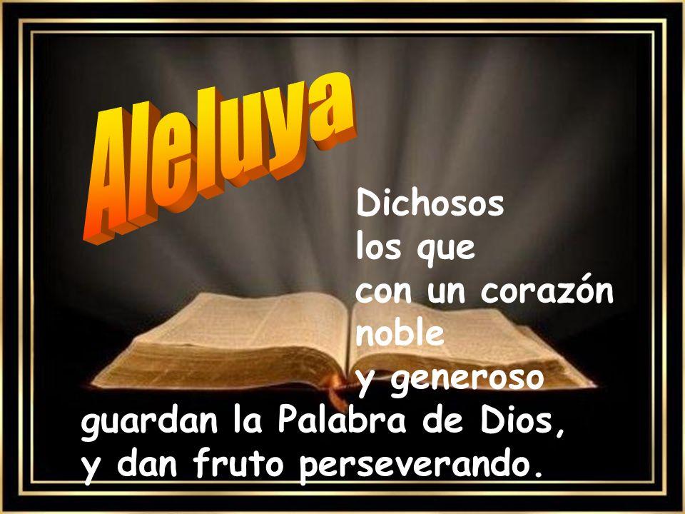 Aleluya Dichosos los que con un corazón noble y generoso guardan la Palabra de Dios, y dan fruto perseverando.