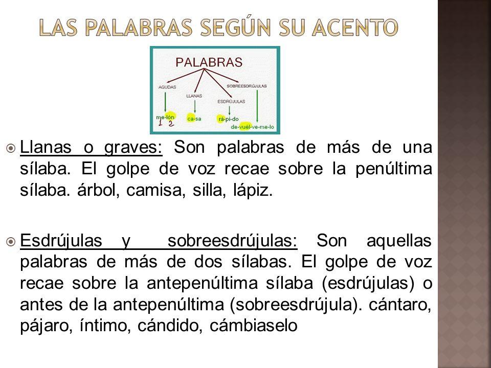 LAS PALABRAS SEGÚN SU ACENTO