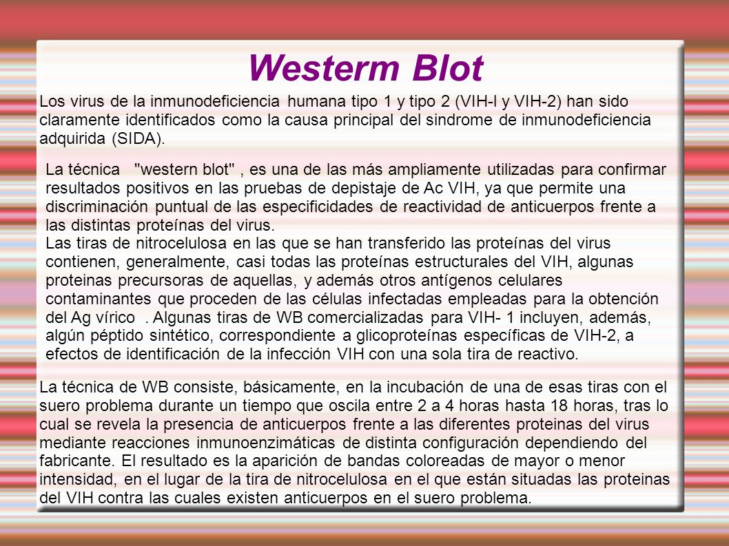 Westerm Blot