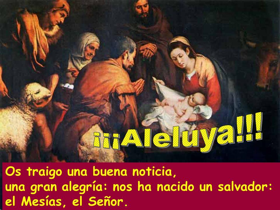 ¡¡¡Aleluya!!!Os traigo una buena noticia, una gran alegría: nos ha nacido un salvador: el Mesías, el Señor.