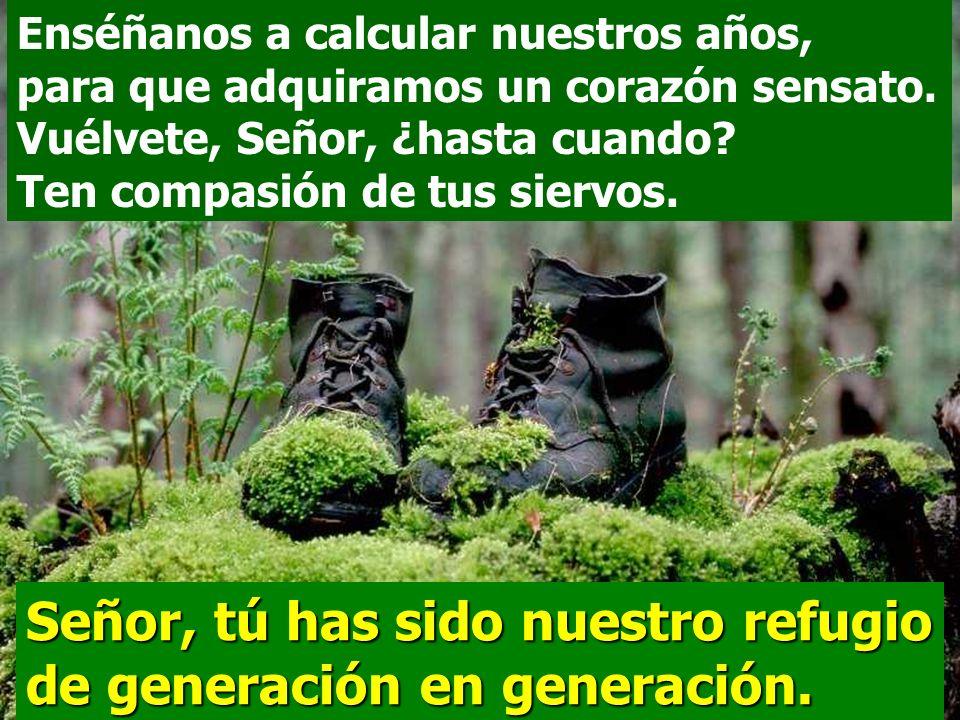 Señor, tú has sido nuestro refugio de generación en generación.